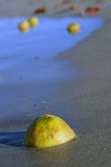 Lemon On The Sea Shore Stock Photo