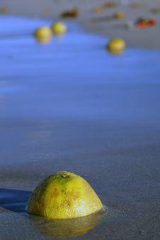 Lemon On The Sea Shore Royalty Free Stock Photography