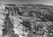 Free The Bryce Canyon National Park Stock Photography - 2988822