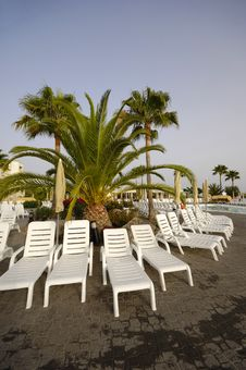 Free Sunbeds And Palm Stock Photography - 2989142