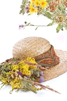 Free Straw Hat And Field Flowers Stock Photography - 2989172