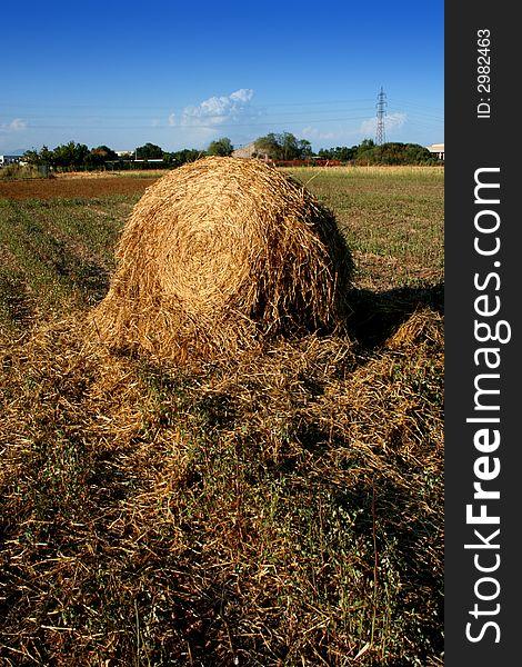 Broken hay bale on the field