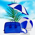 Free Blue Bag, Ball, Umbrella Palm, Cap Royalty Free Stock Photos - 29803208