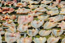 Free Fish Dryer Method In Thailand Royalty Free Stock Photos - 29804628