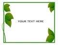 Free Leaf Frame Royalty Free Stock Photo - 29812795
