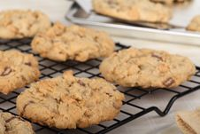 Peanut Butter Cookies Closeup Stock Photos
