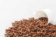 Free Coffee Beans Background With White Cup Stock Photography - 29814562