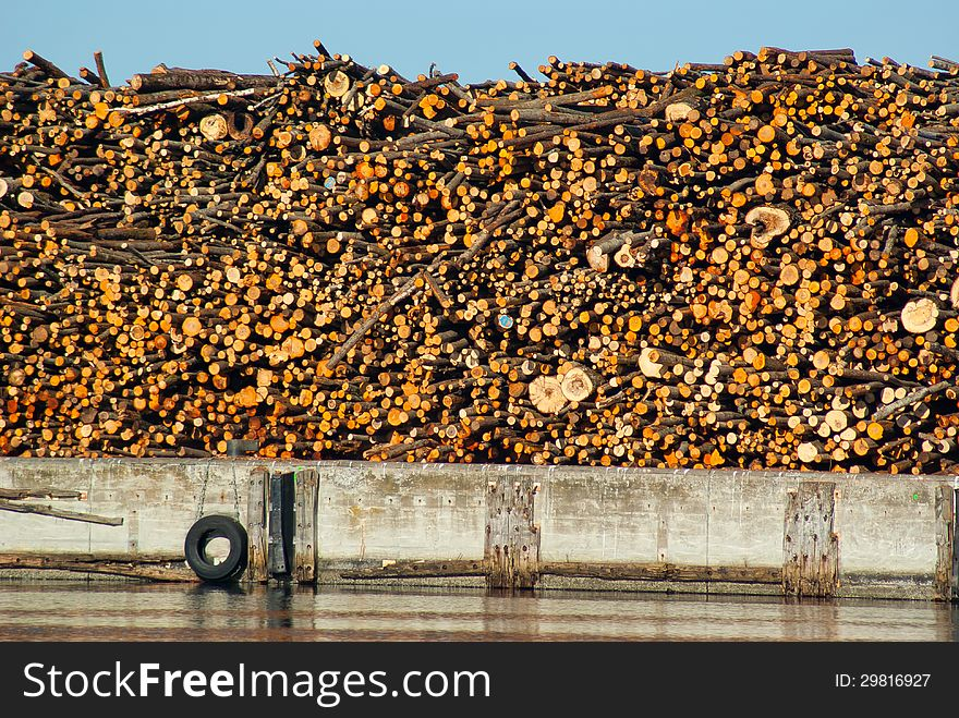 Stack of dried fire wood logs