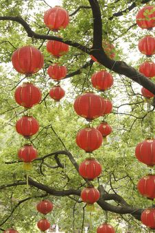 Free Red Lanterns Royalty Free Stock Image - 29828936