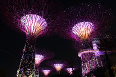 Free Garden By The Bay Supertrees Royalty Free Stock Photos - 29831028