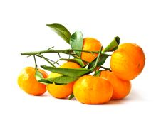 Free Orange Fruit Stock Photography - 29832502