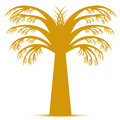 Free Abstract Palm Tree Stock Photography - 29840212