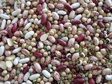 Free Legumes Royalty Free Stock Photos - 29840718