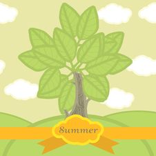 Free Green Tree In The Summer. Seamless Pattern Royalty Free Stock Image - 29844606