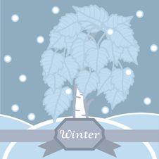 Free Winter Birch In Hoarfrost. Seamless Pattern. Stock Photo - 29844610