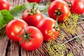 Free Tomatoes, Cooked With Herbs For The Preservation Royalty Free Stock Images - 29856349
