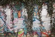 Free Graffiti Royalty Free Stock Images - 29850919