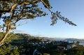 Free Wellington Cityscape Stock Photo - 29860410