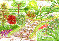 Free Garden Sketch Royalty Free Stock Image - 29862056