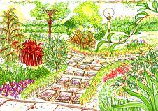 Garden Sketch Royalty Free Stock Image