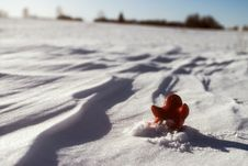 Free Little Lonely Red Man Stay On Snow Royalty Free Stock Photos - 29882648