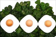 Free Easter Eggs And Ivy Leaves Royalty Free Stock Images - 29888249
