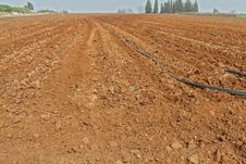Plowed Field Ready To Receive The Seed. Stock Image