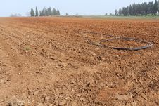 Free Plowed Field. Royalty Free Stock Images - 29892119
