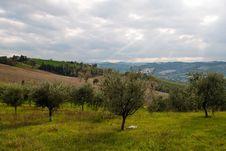 Free Romagna Countryside Royalty Free Stock Photos - 29894268
