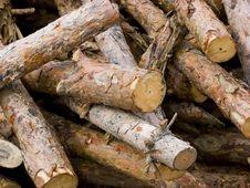 Free Timber Stock Image - 2990431