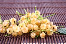 Free Currant Stock Images - 2990774