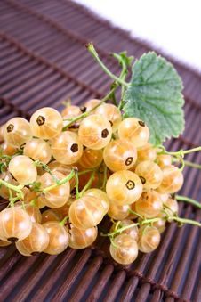 Free Currant Stock Photos - 2990803