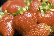 Free Red Ripe Strawberries Royalty Free Stock Image - 2991456