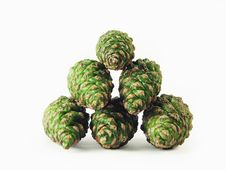 Free Green Pine Cones Stock Image - 2992131