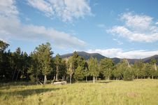 Free High Mountain Meadow Royalty Free Stock Photos - 2992488