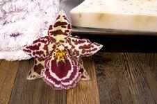 Free Bath Items. Spa Royalty Free Stock Image - 2994186