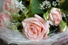 Free Bunch Of Flowers Pink Roses Stock Photography - 2994262