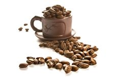 Free Coffee Grains In Brown Cup Stock Image - 2994551