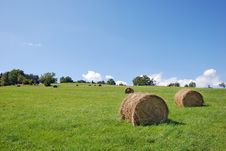 Free After Harvest Stock Photos - 2997223