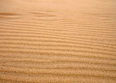 Free Dune Royalty Free Stock Photography - 2998847
