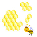 Free Cartoon Happy Bee With Honeycomb Royalty Free Stock Photos - 29904838