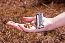 Free Bullets And Clip Royalty Free Stock Images - 29904539