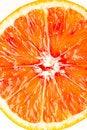 Free Orange Royalty Free Stock Images - 29918259