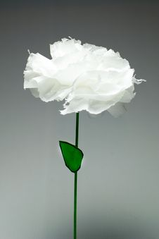 Free Flower Of White Paper Stock Photos - 29910733