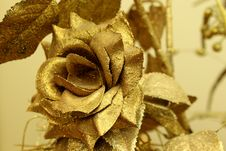 Free Golden Rose Royalty Free Stock Images - 29919479