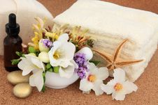 Free Flower Spa Treatment Royalty Free Stock Photography - 29922037