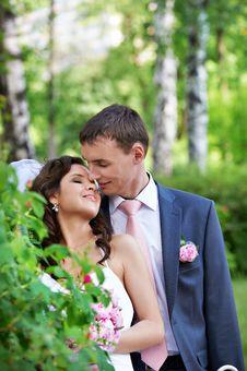 Free Beauty Bride And Groom On Wedding Walk Stock Image - 29927601