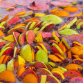 Free Mulled Wine Stock Images - 29937544