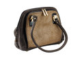 Free Female Bag Of Brown Colour Stock Images - 29938194