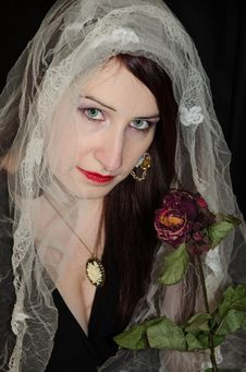 Girl With White Veil And Rose Royalty Free Stock Image